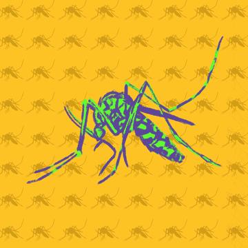 Gene-Drive-Mücken