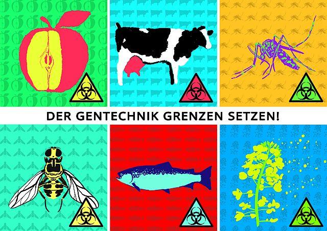 Der Gentechnik Grenzen setzen - Teilnehmen an E-Mail-Aktionen und Bestellen von Postkarten zur Aktion