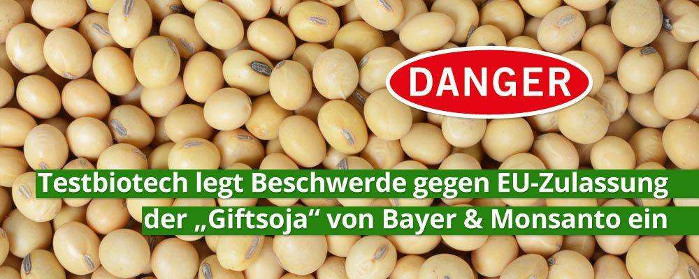 """Testbiotech legt Beschwerde gegen EU-Zulassung der """"Giftsoja"""" von Bayer & Monsanto ein"""