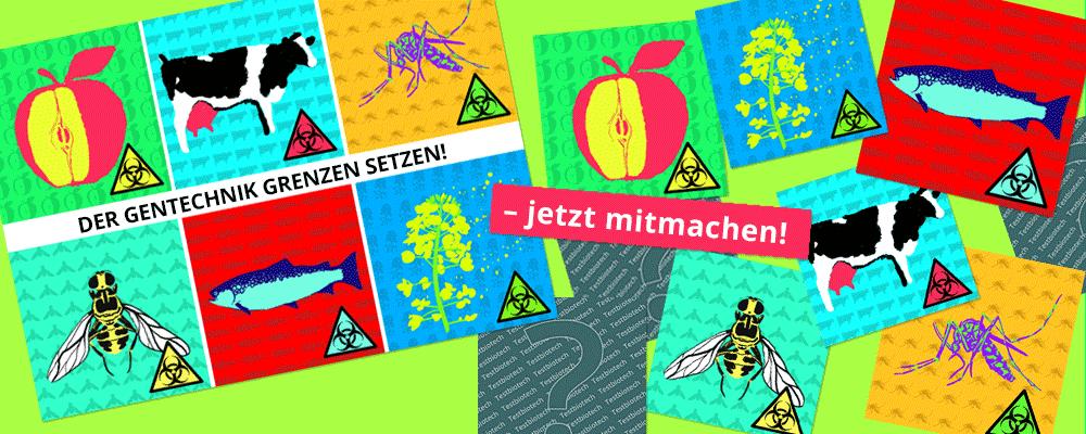 Der Gentechnik Grenzen setzen! Große Mitmach-Aktion von Testbiotech.