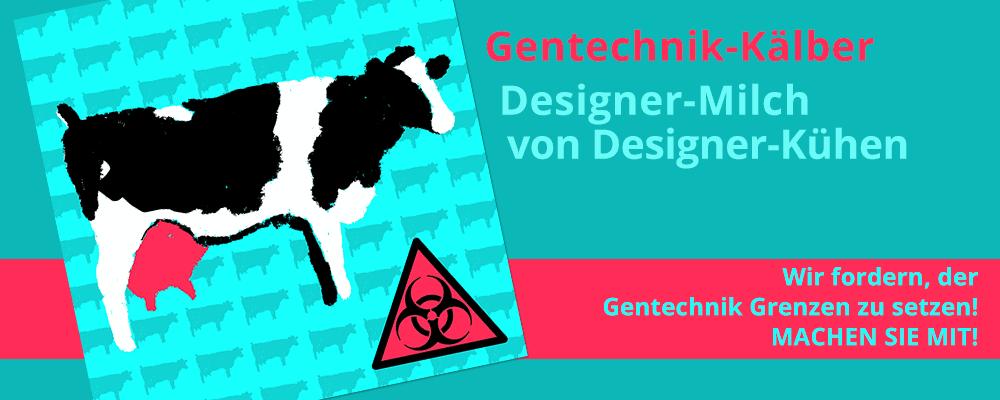 Gentechnik-Kaelber