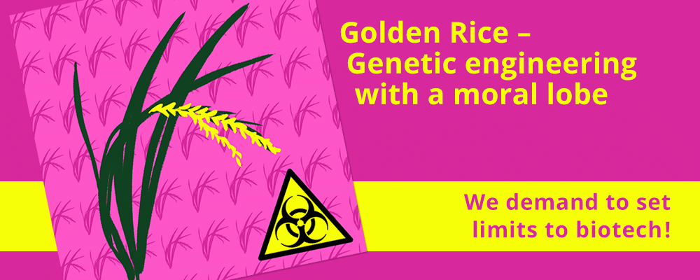 Golden Rice - genetic engineering with a mora lobe