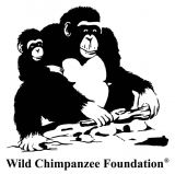 Logo Wild Chimpanzee Foundation
